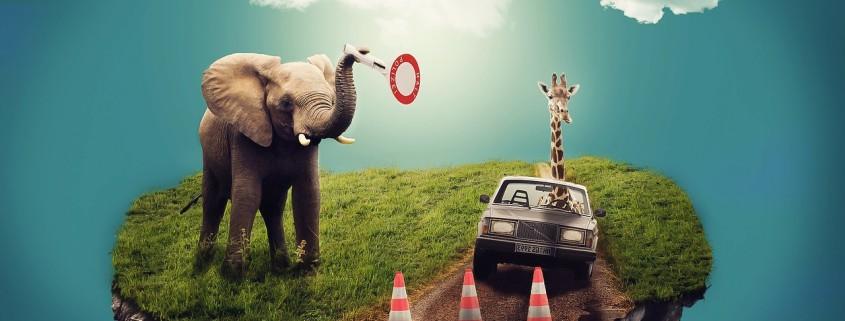 Immagine fantastica di elefanti su una zolla di terra volante.